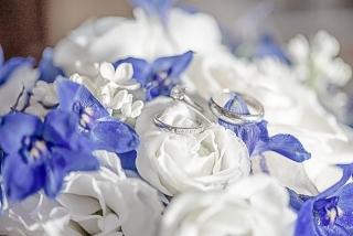 сватбени халки, халки от платина и диаманти, възглавнички за сватбени халки, сватбени пръстени, декорация на сватбена агенция Приказен ден, сватбен агент Мариела Уилсън