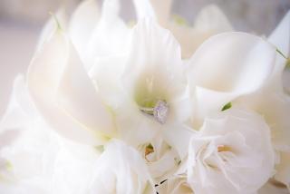 сватбен пръстен, сватбен пръстен с диамант, сватбени халки, възглавничка за сватбени пръстени, декорация на сватбена агенция Приказен ден, сватбен агент Мариела Уилсън